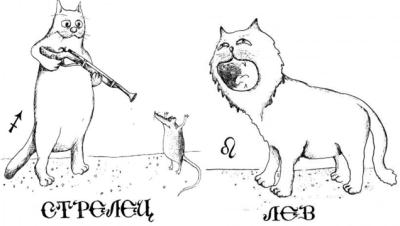 Совместимость Льва И Стрельца Дружба