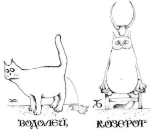 Совместимость по гороскопу водолей и