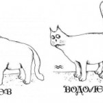 Совместимость лев и водолей