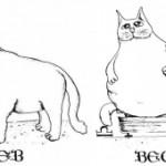 Совместимость Лев-Весы по гороскопу